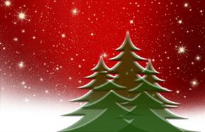 Weihnachtsbäume_ Quelle: pixabay