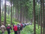 Wanderung durch den Forst oberhalb von Antonsthal
