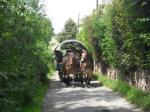 Mit Pferdestärken unterwegs