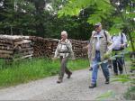 Im Wald oberhalb der Buchschneidmühle bei Erlabrück