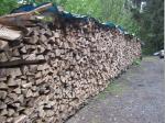 Viel trockenes Buchenholz braucht es für das Anlegen eines Meilers