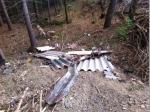 Asbesthaltige Dachplatten wurden bei Geuser gefunden